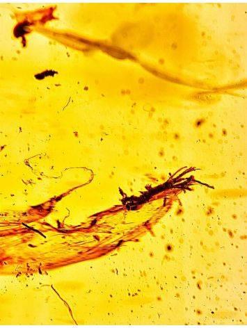 Уникальная ручка из дерева и натурального цельного балтийского янтаря с включениями, фото , изображение 8