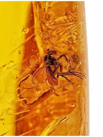 Удлинённый кусочек натурального балтийского янтаря лимонного цвета с инклюзом, фото , изображение 2