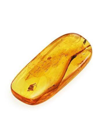 Сувенирный янтарь с инклюзом маленького паучка, фото