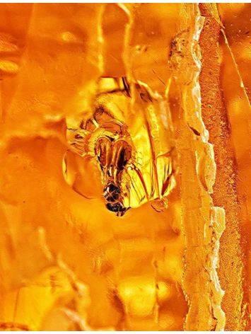 Крупный янтарь коньячного цвета с инклюзами насекомых, фото , изображение 6