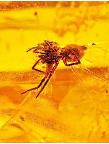 Прозрачный натуральный янтарь с насекомым, фото , изображение 2